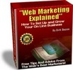 Thumbnail Web Marketing Explained Real People Explain their Success